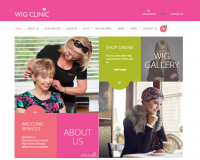 Wig Clinic Ireland Global Vision Website Design